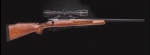 Howa Hunter Gameking -2014-12-08 14_32_03